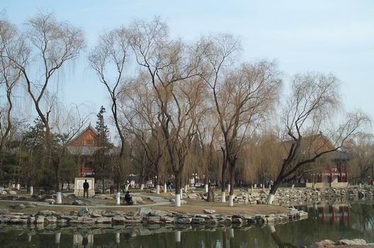 A part of Peking University - isn't it beautiful?